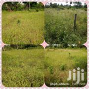 Land And Plot For Sale | Land & Plots For Sale for sale in Dar es Salaam, Ilala