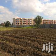Plot at Gezaulole Kigamboni | Land & Plots For Sale for sale in Dar es Salaam, Temeke