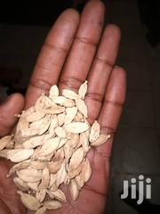 White Cardamom | Feeds, Supplements & Seeds for sale in Tanga, Tanga