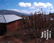 The House For Sale Has A Large Backyard Price | Land & Plots For Sale for sale in Mbeya, Maendeleo